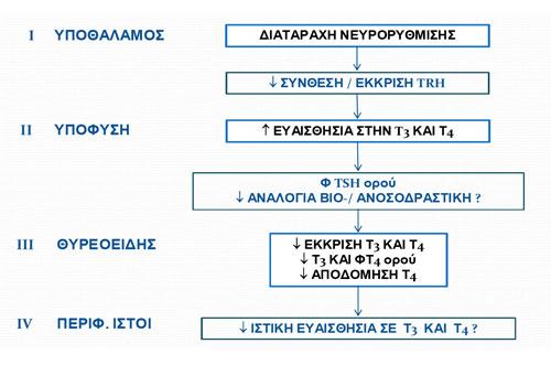 10.17image6
